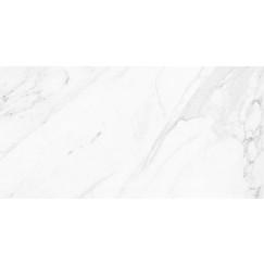 Vloertegels calacatta glossy rect 60x120