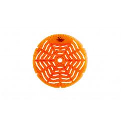 Starbluedisc  uri-pad citrus a 5 stuks oranje Oranje 539201821